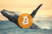 BitcoinWhales 214x140 - Bitcoin Hits $42,000 - Kraken Research Reveals How Whales Accumulated in December 2020