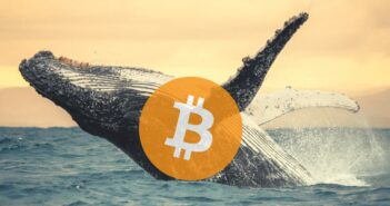BitcoinWhales 351x185 - Bitcoin Hits $42,000 - Kraken Research Reveals How Whales Accumulated in December 2020